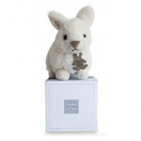Accueil Histoire d'ours doudou Histoire d'ours Lapin Blanc 18cms HO2540 Lapidoux Pantin